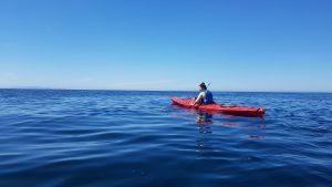 causeway-kayaking